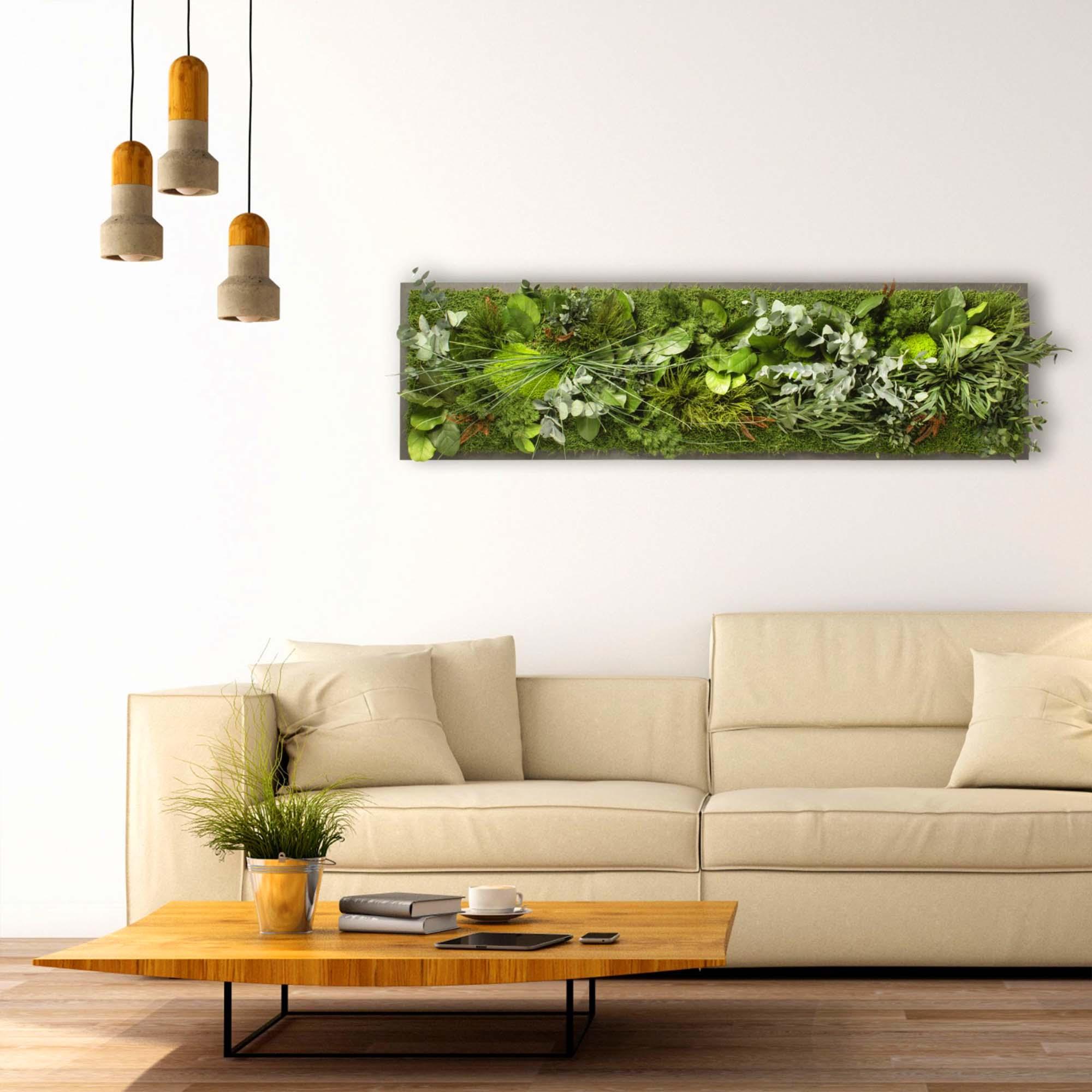 Dschungelmoosbild lang auf schwarzem Hintergrund in Stube mit heller Coach