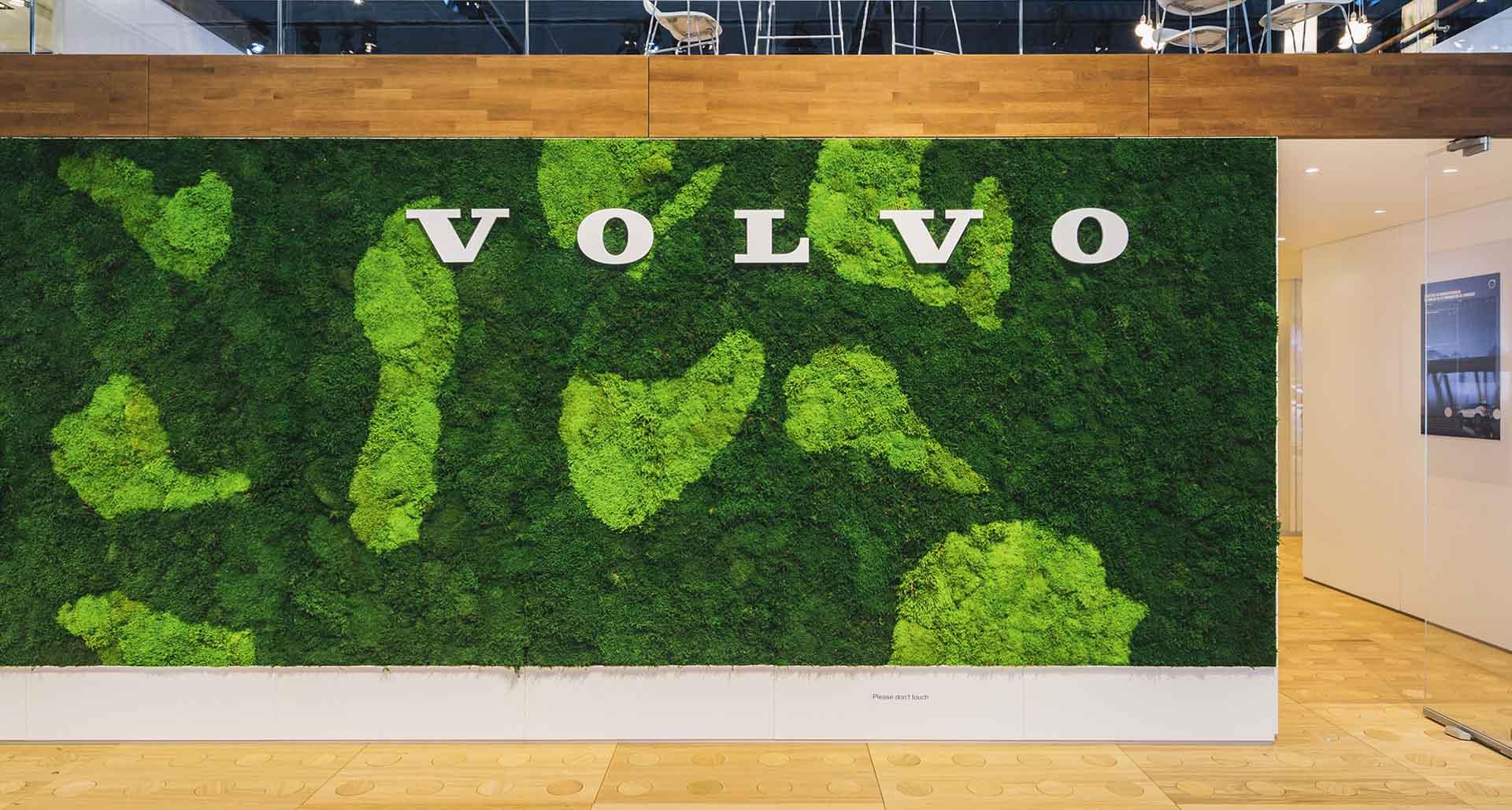 Mooswand aus Ballenmoos mit Logo Volvo
