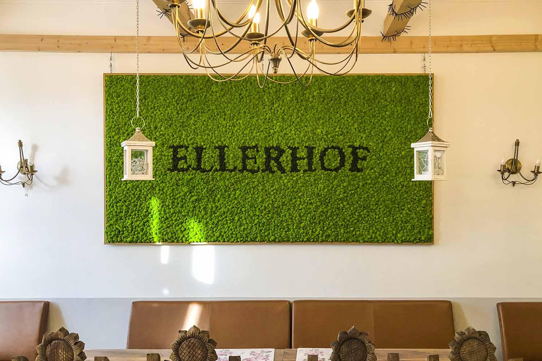 Moosbild mit Islandmoos Restaurant Ellerhof
