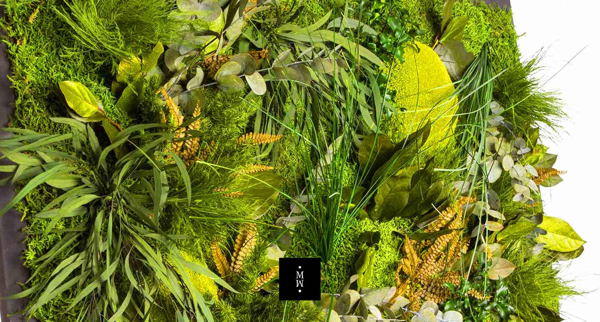 Dschungelmoos im Detail
