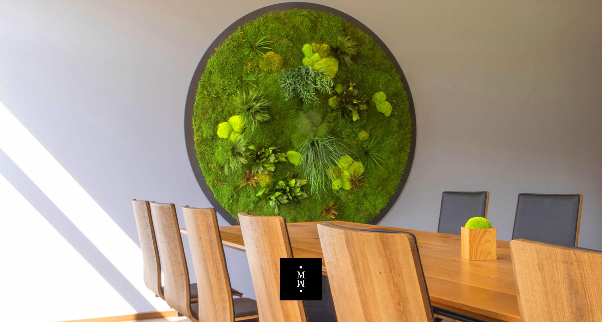 Moosbild Rund Ballenmoos Wandmoos Pflanzen Durchmesser 200 cm