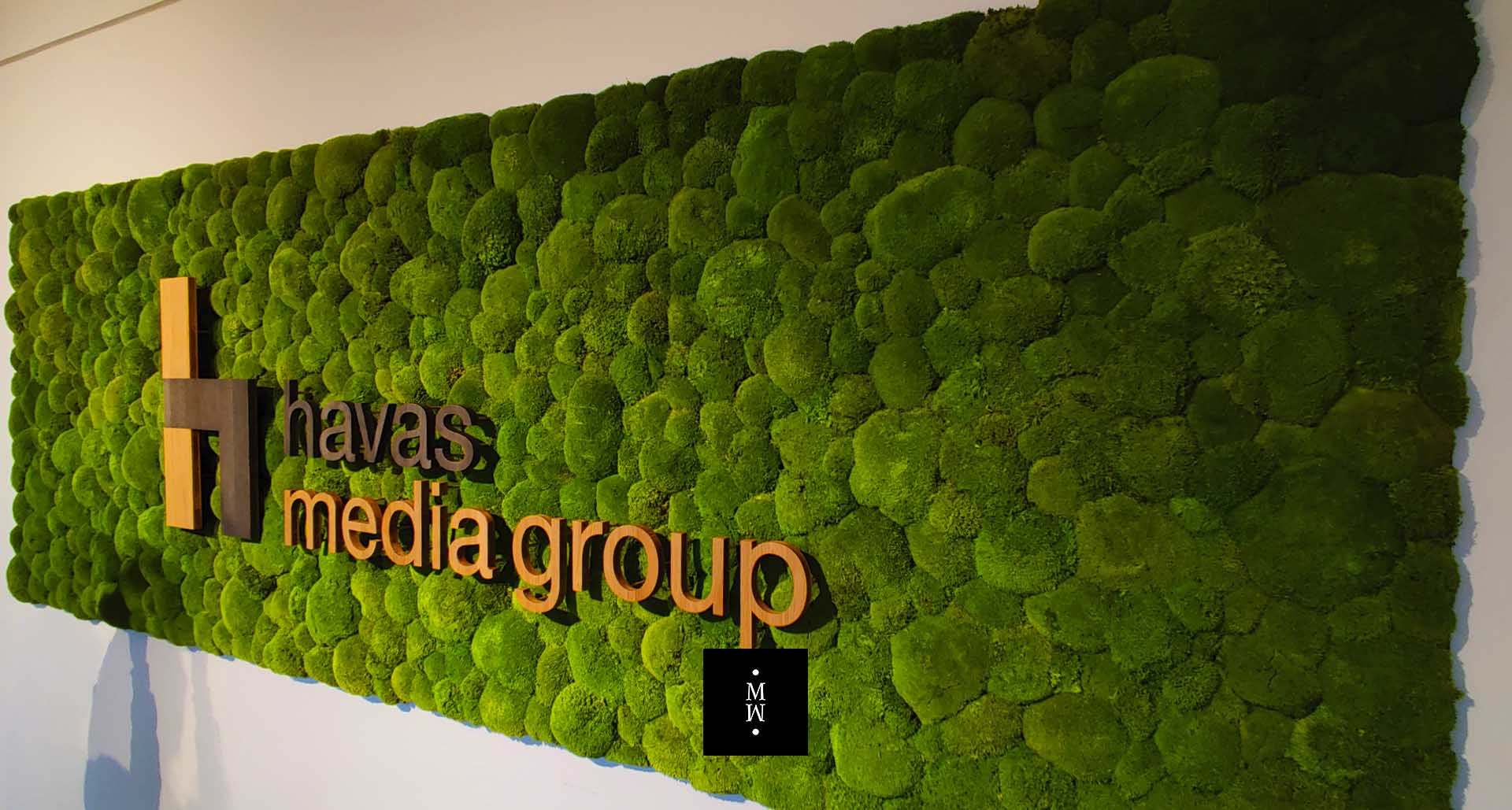 Moosbild Ballenmoos mit Logo Havas Media Group