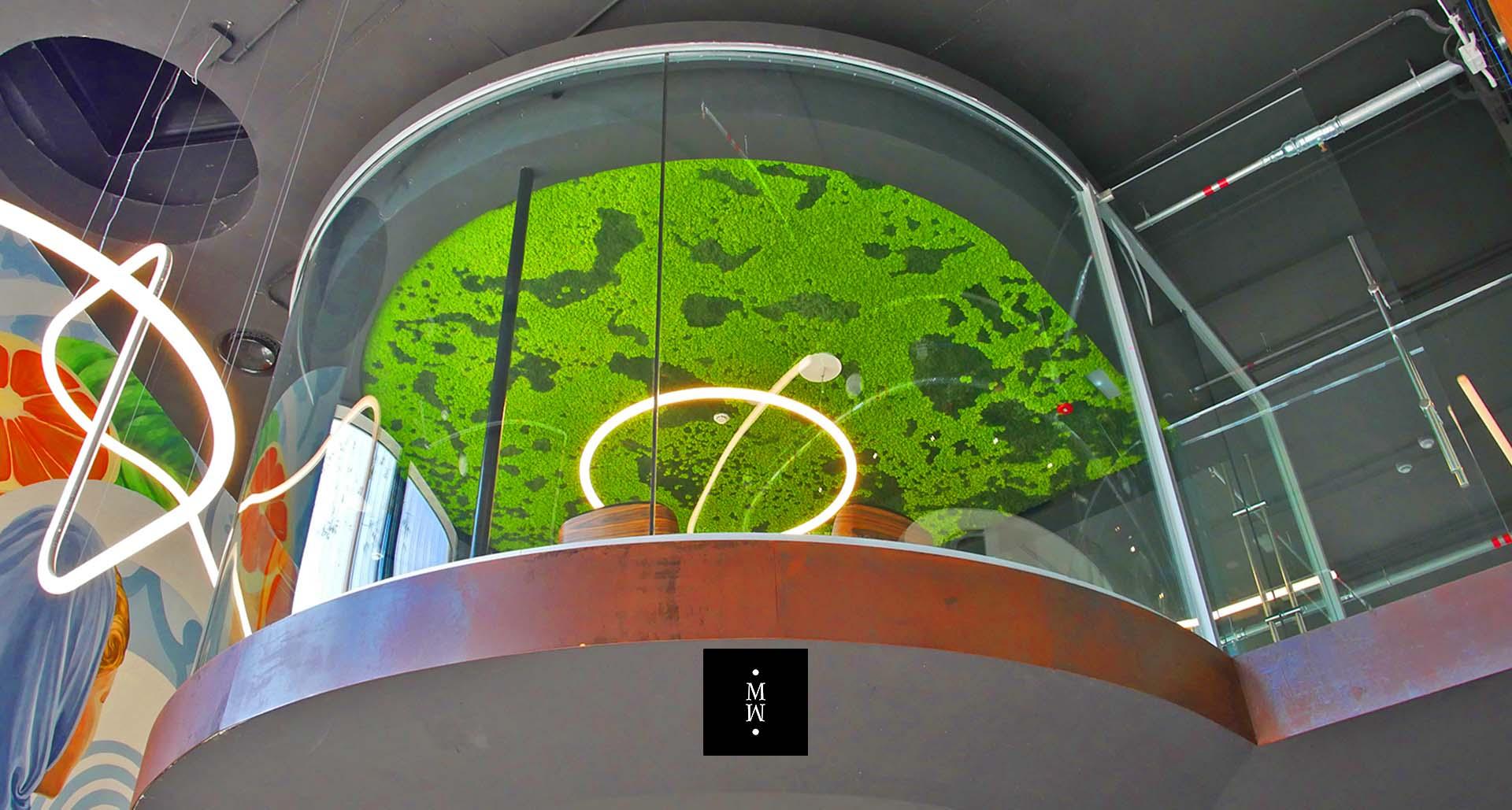 Zimmerdecke aus Islandmoos The Circle auf Mallorca